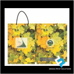 Papers Carry Bags Design-Print